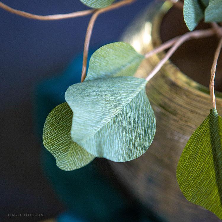 crepe paper silver dollar eucalyptus