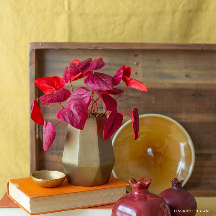 crepe paper red peperomia caperata