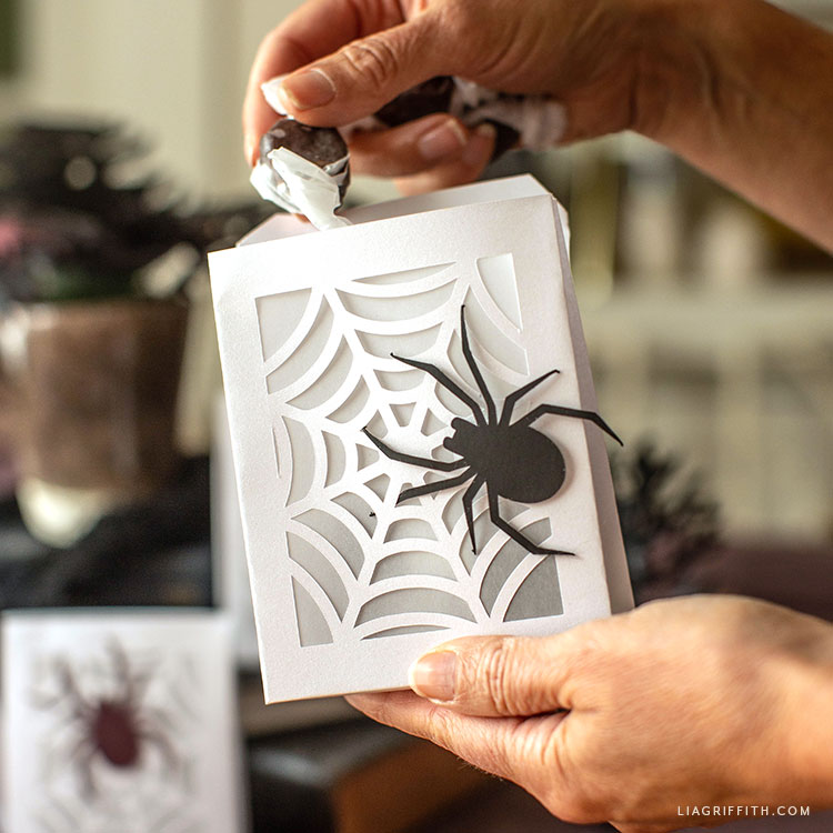 DIY spiderweb treat bag