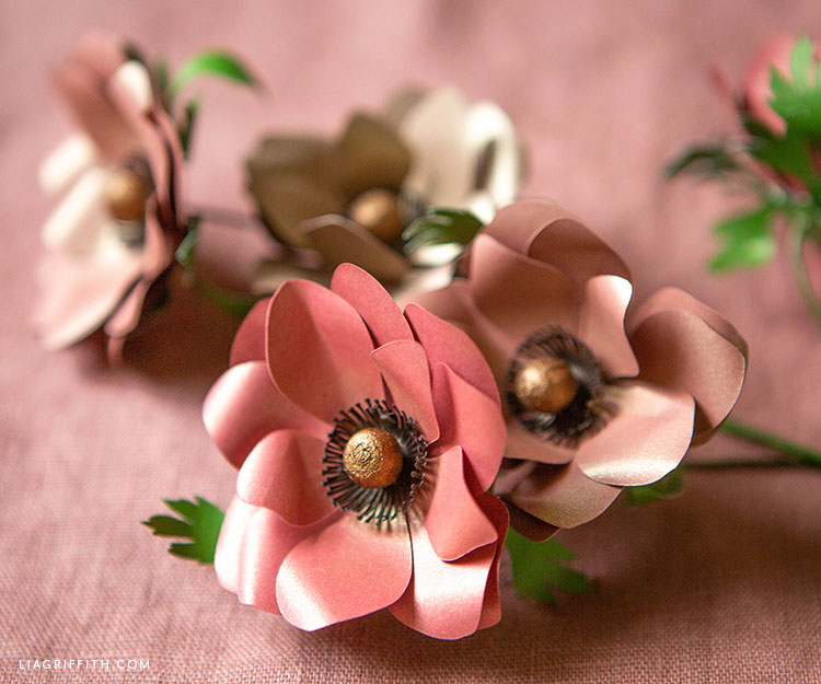 frosted paper fall anemones