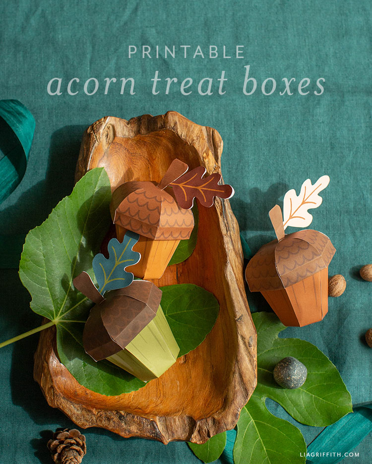 printable acorn treat boxes
