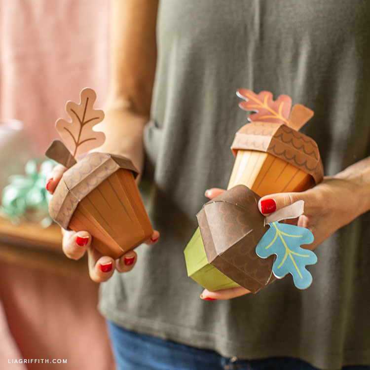 paper acorn treat boxes