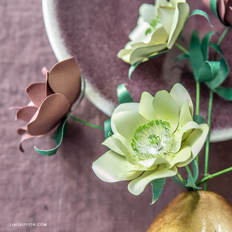 frosted paper double hellebore flowers