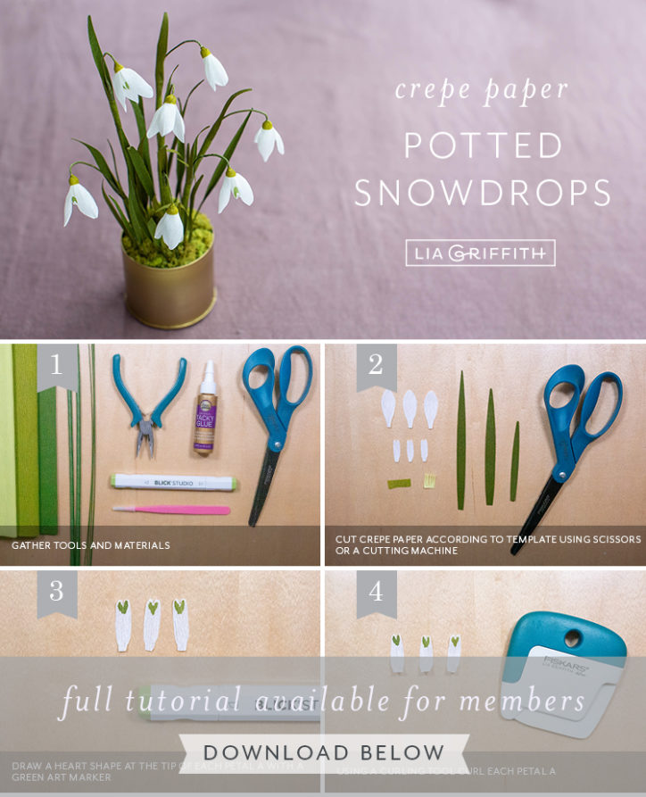 Photo tutorial for crepe paper snowdrop flowers by Lia Griffith