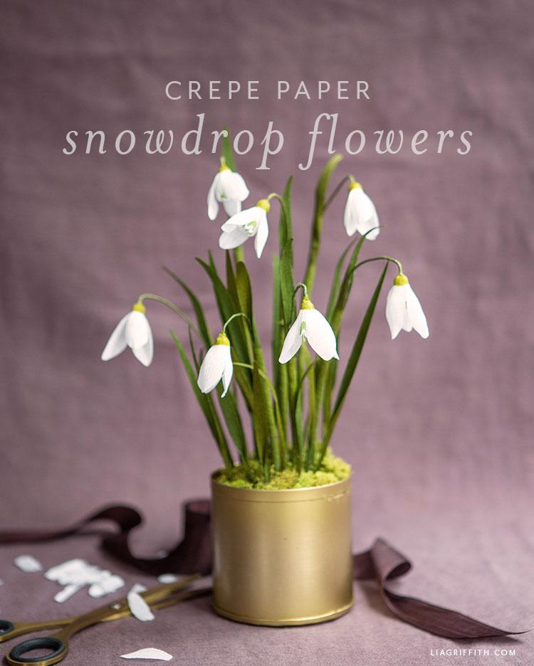 crepe paper snowdrop flowers
