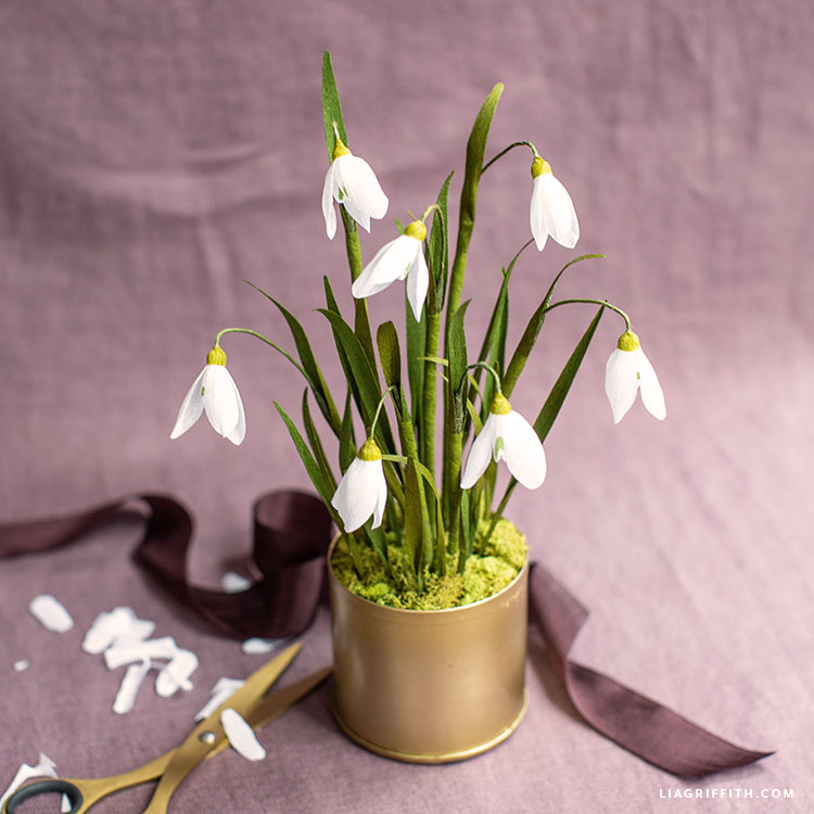potted crepe paper snowdrop flowers