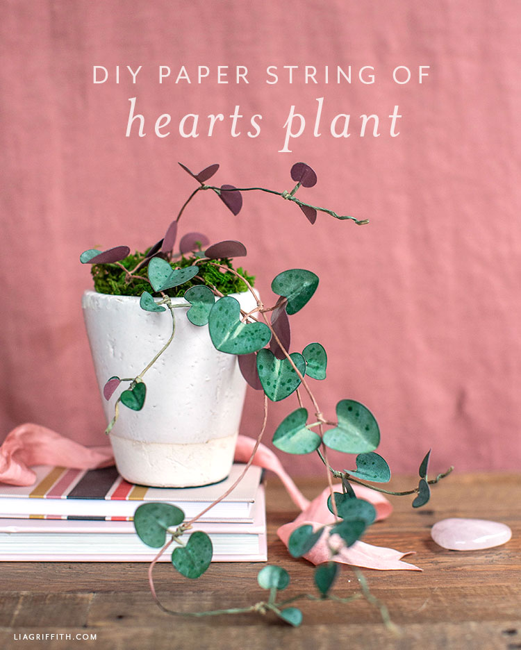 DIY paper string of hearts plant