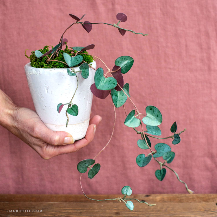 Handmade paper string of hearts plant
