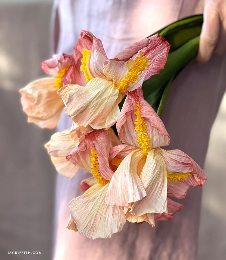 crepe paper bearded iris with watercolor effect