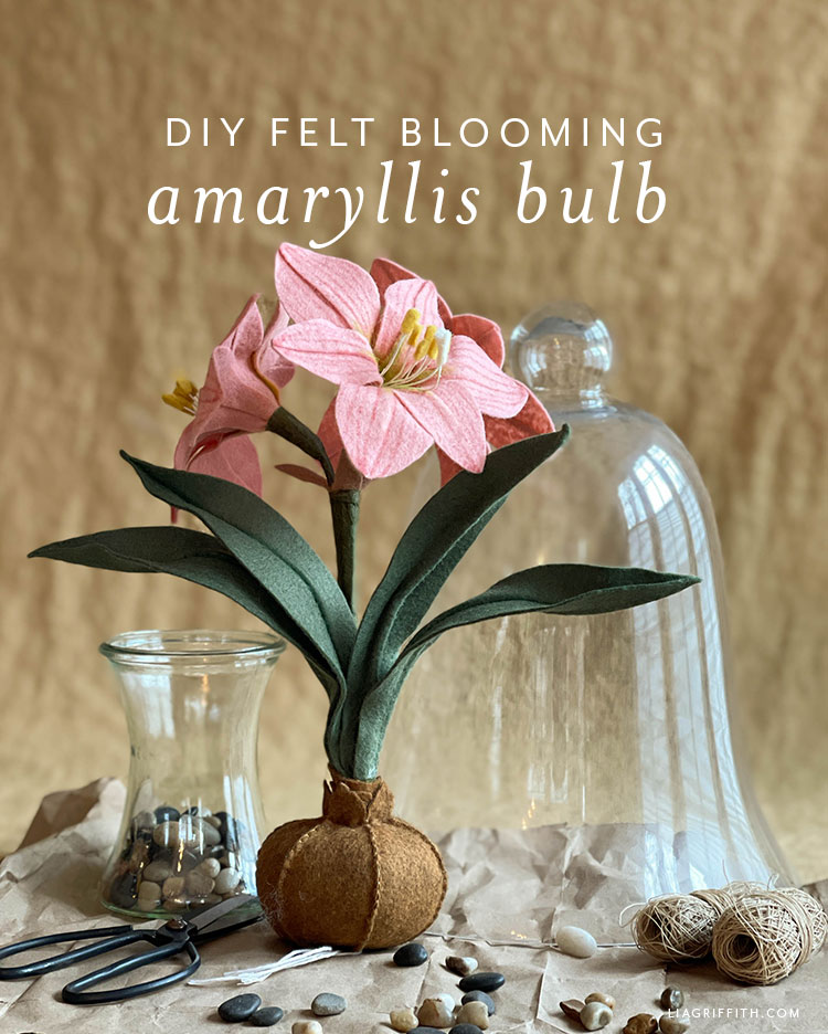 DIY felt blooming amaryllis bulb