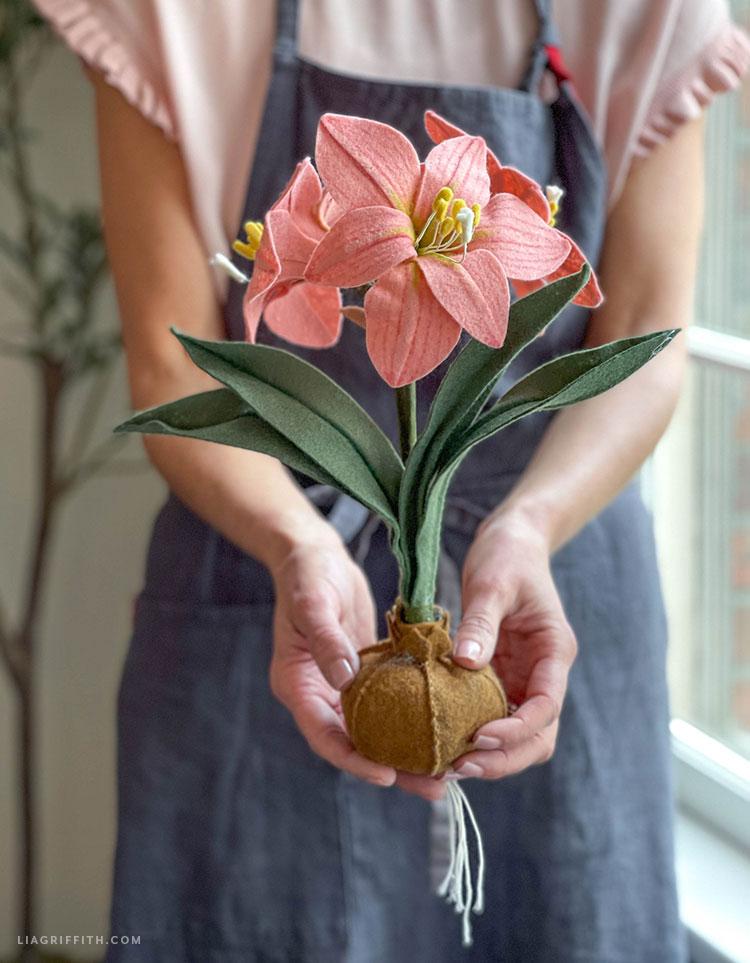 handmade felt felt amaryllis with bulb