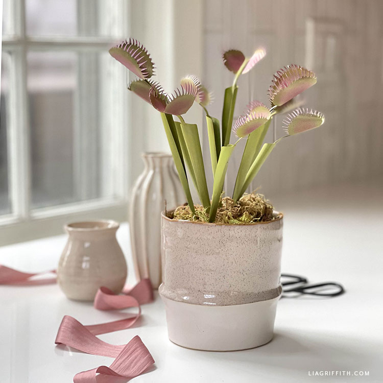 DIY frosted paper Venus fly trap