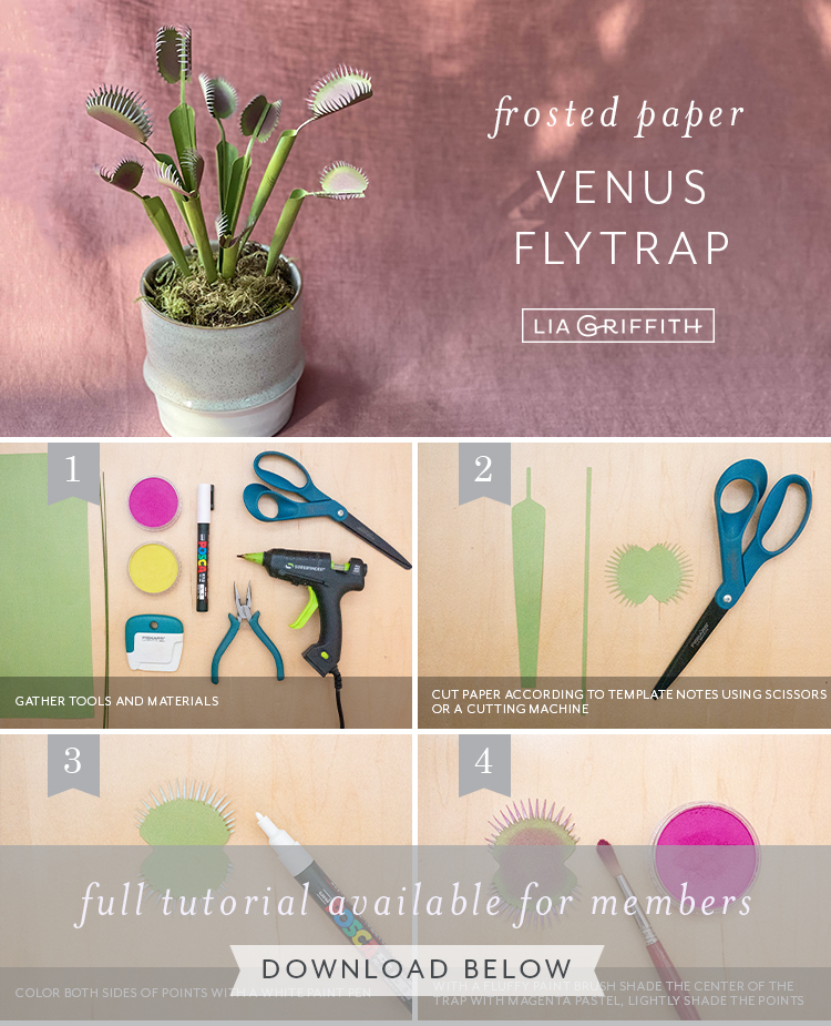 photo tutorial for frosted paper Venus fly trap by Lia Griffith