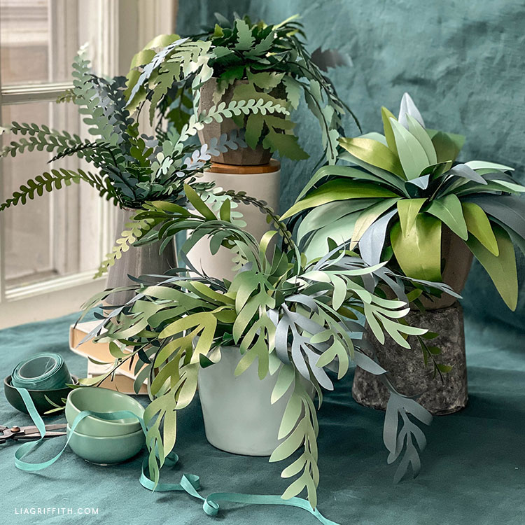 frosted paper eucalyptus and fern plants