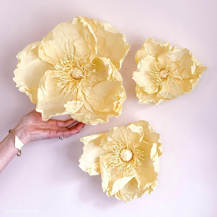 jumbo crepe paper poppies