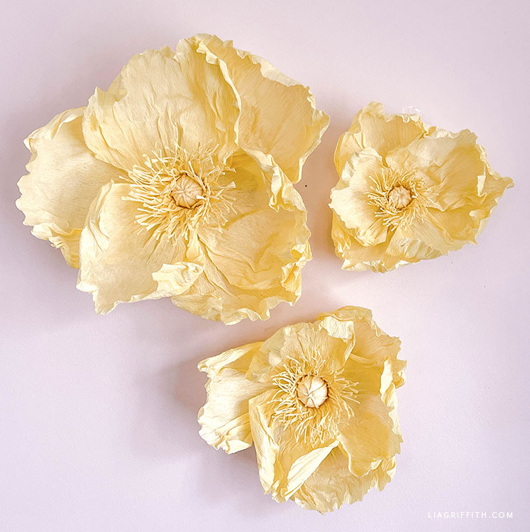 DIY jumbo crepe paper poppies