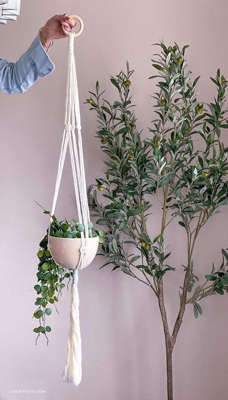 handmade Josephine knot macrame plant hanger