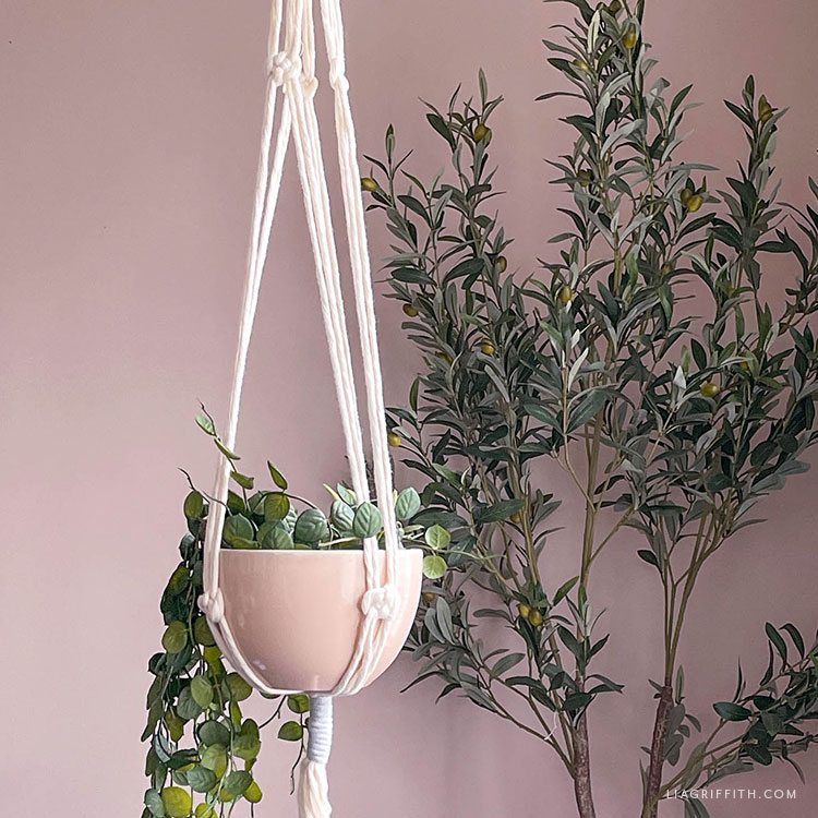 Josephine knot macrame plant hanger