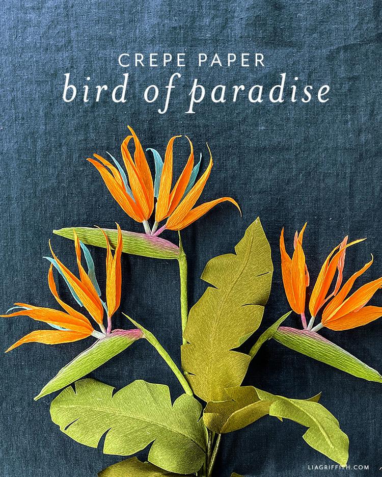 crepe paper bird of paradise