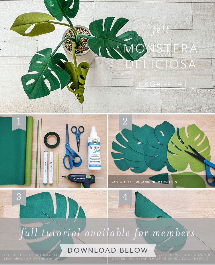 Photo tutorial for felt monstera by Lia Griffith
