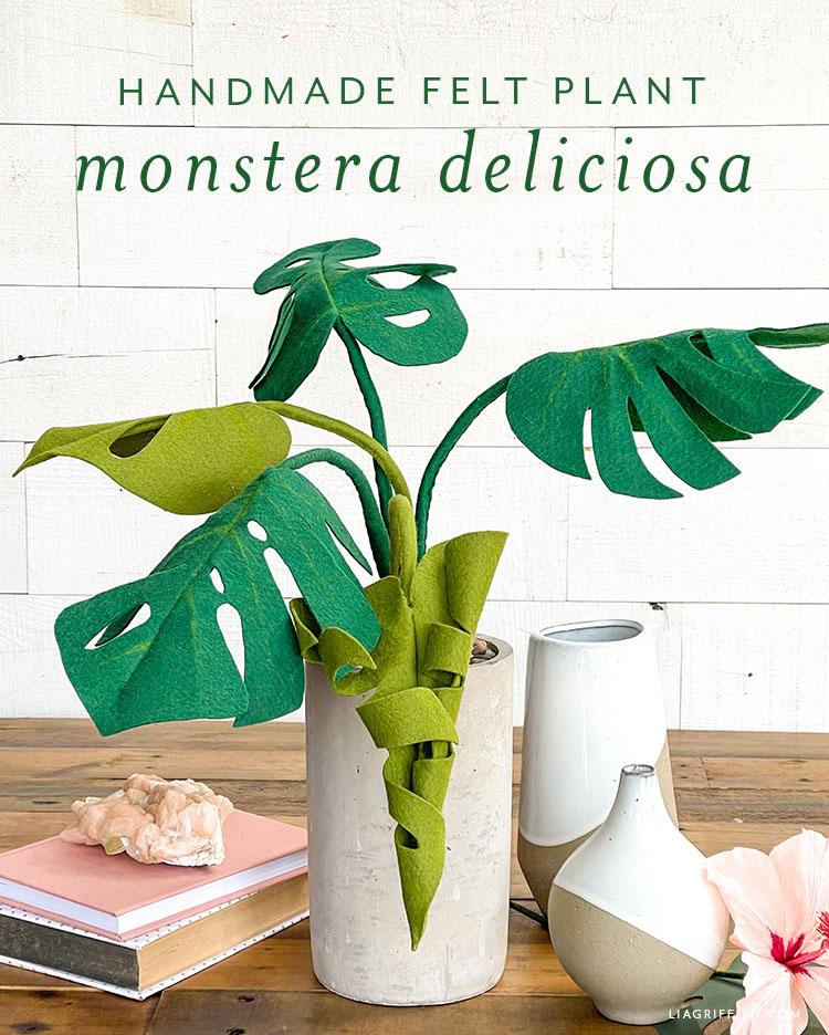 handmade felt plant monstera deliciosa
