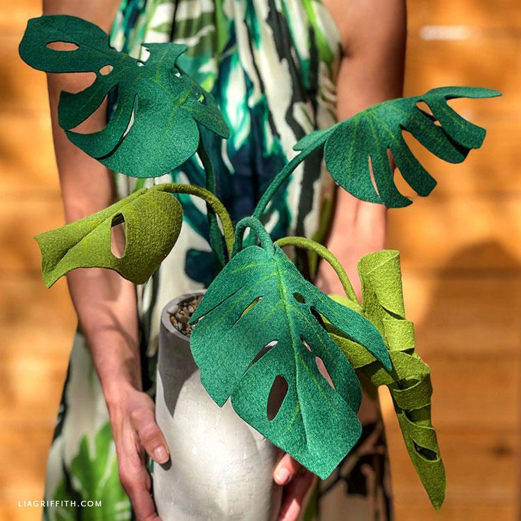 handmade felt monstera plant