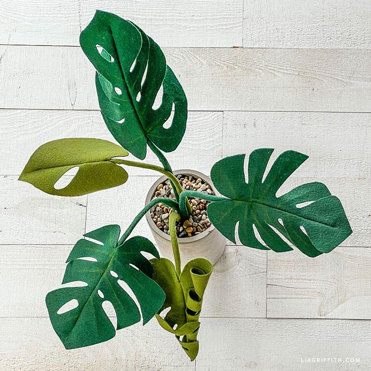 DIY felt monstera plant