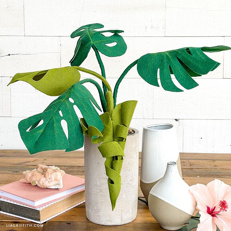 felt monstera plant