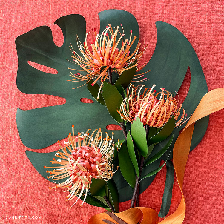 DIY paper pincushion protea and monstera leaf