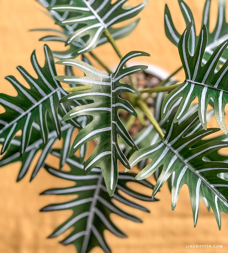 DIY paper xanadu plant