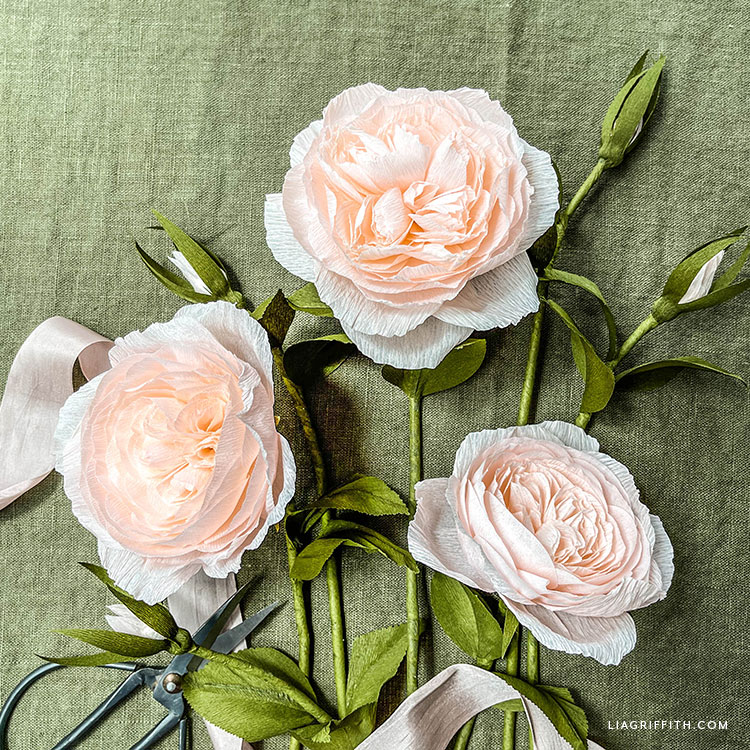 crepe paper Juliet roses and buds