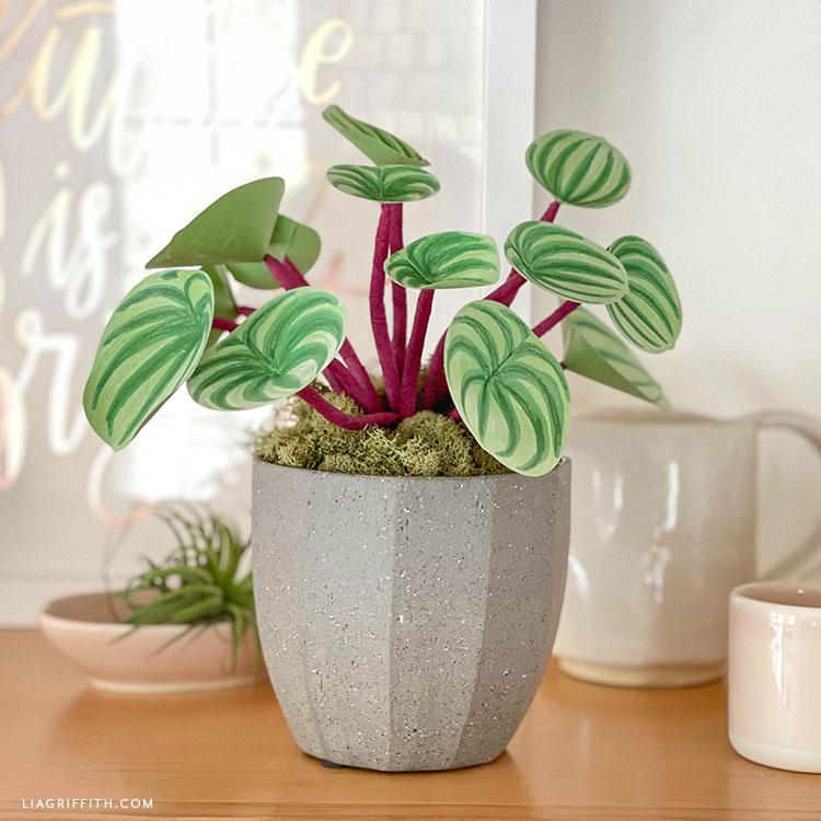 DIY plant decor