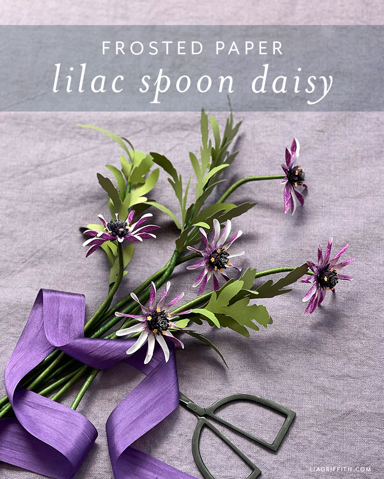 frosted paper lilac spoon daisy