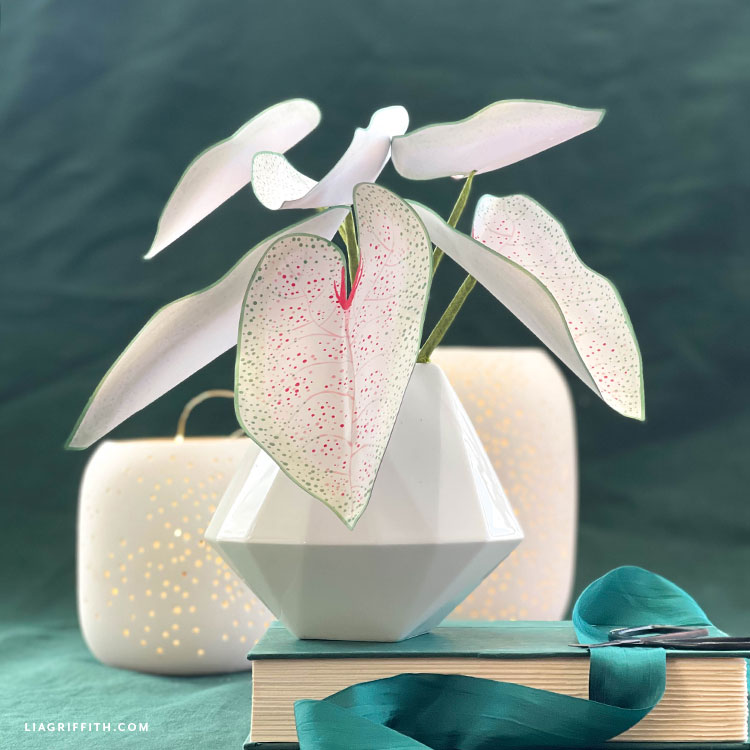 DIY frosted paper night blooming caladium