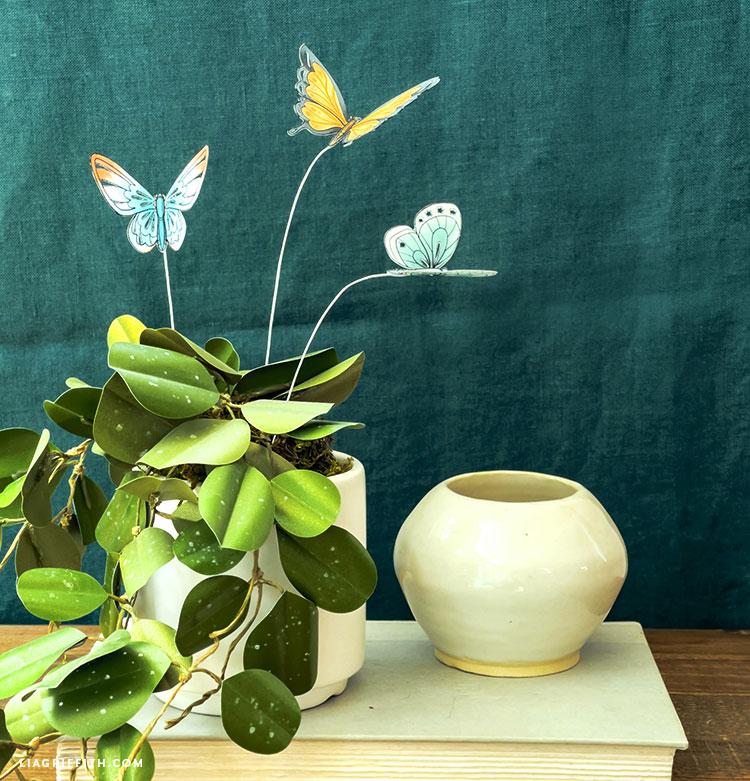 borboletas de papel e hoya obovata de papel