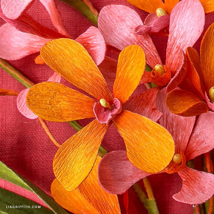 crepe paper mokara orchid