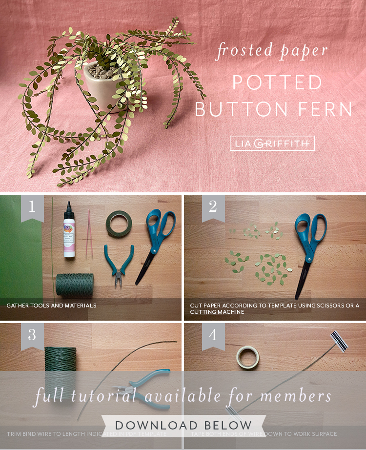 frosted paper potted button fern tutorial by Lia Griffith