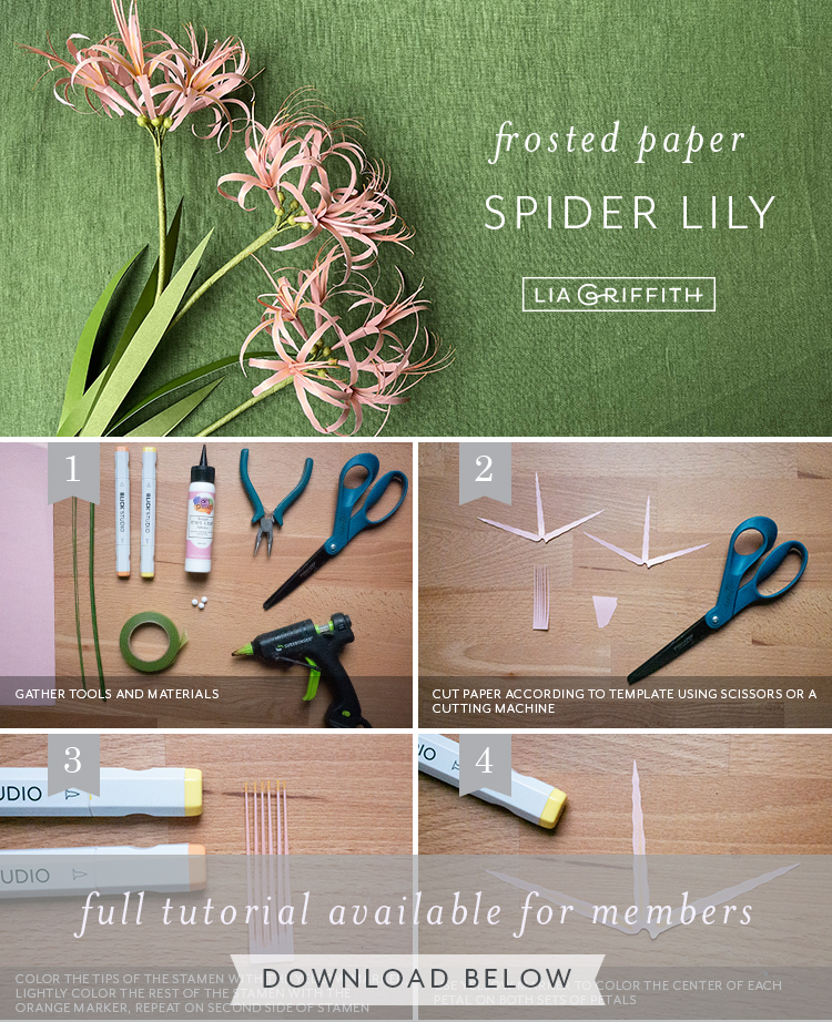 frosted paper spider lily tutorial by Lia Griffith