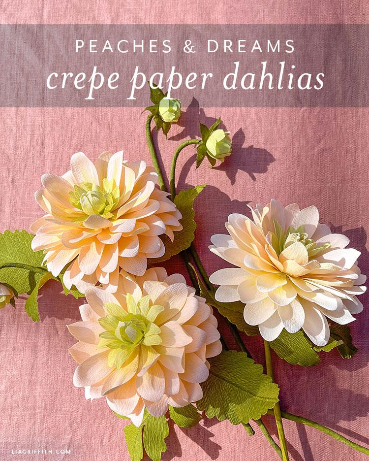 peaches & dreams crepe paper dahlias