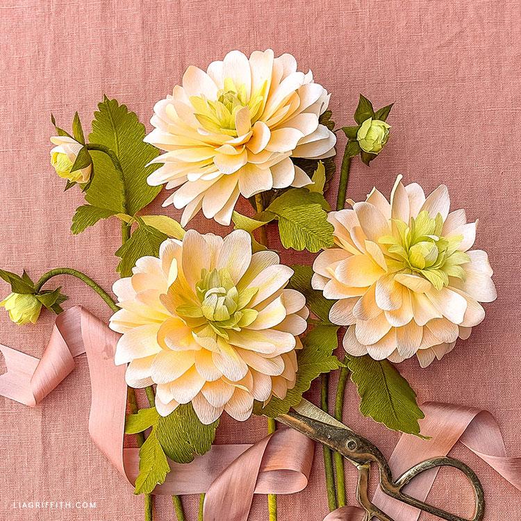 DIY peaches and dreams crepe paper dahlias