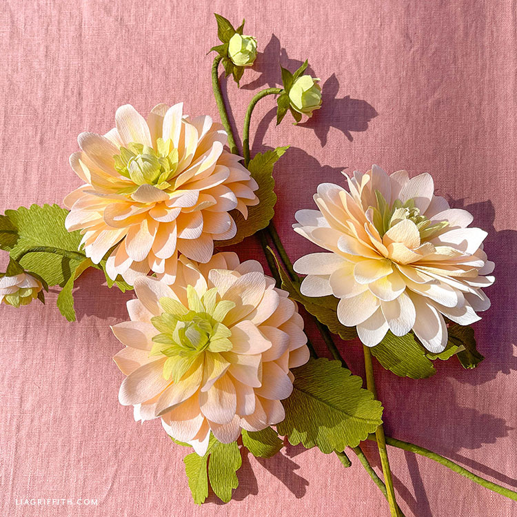peaches and dreams crepe paper dahlias and buds