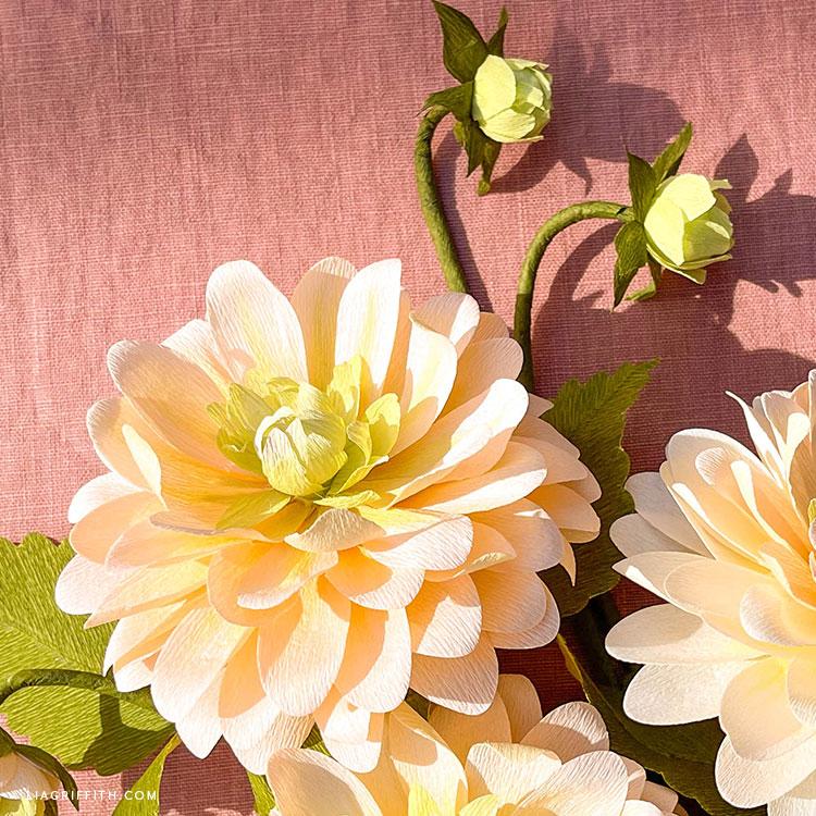 handmade crepe paper peaches and dreams dahlias